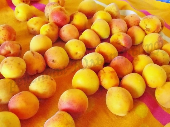 абрикосы помоем и обсушим