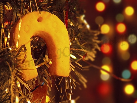 новогоднее печенье в виде подковы