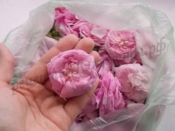 припас из чайных роз на зиму