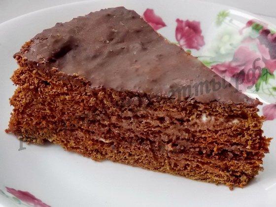 шоколадный медовик рецепт с фото